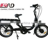 Family Electric Cargo Bikes for children