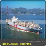 lnternational logistics and freight shipping to Manzanillo Mexico from foshan/guangzhou/shenzhen