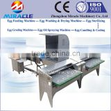 Chicken eggs picking, graded eggs, sorting machine of egg production plant with 5,000 eggs picker grading equipment