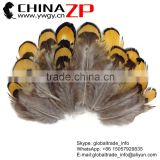 Golden Supplier CHINAZP Bulk Cheap 5-8cm Length Dyed Golden Yellow Plumage Reeves Venery Pheasant Feathers
