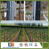 INQUIRY about Metal Vineyard Trellis posts/vineyard Trellis stakes/Vineyard Trellis