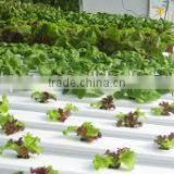 PVC Frame Material hydroponic nft channel