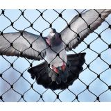 Bird exclusion netting