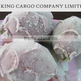 VIET NAM _ FROZEN DRAGON FRUIT _ GOOD PRICE