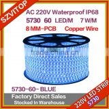 220V AC LED Strip Light 100M BLUE SMD 5630 60 LED/M Waterproof IP67 LED Stripe 100M/Roll Copper wires High Brightness                                                                         Quality Choice