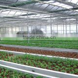 4/6/8/10mm 100% Bayer material UV coated twinwall polycarbonate hollow sheet for greenhouse roofing