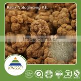 cGMP Manafacture Supply Chinese Herbal Medicine 100% Natural Pseudoginseng Extract Notoginsenoside Powder KS--N02