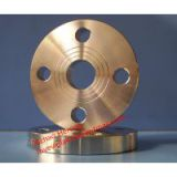 DIN standard forged stainless steel plate flange with flat face