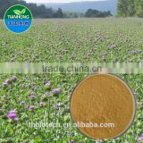 Manufacturer Pure Natural High Quality Milk Thistle Extract, Silymarin Milk Thistle, Milk Thistle Extract Powder