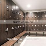 Swimming Pool Lockers Gym Sports Locker Rooms Laminate Personal Lockers                                                                         Quality Choice