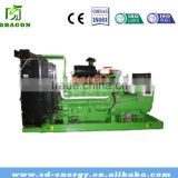 30kVA LNG Biogas Natural Gas Generators CCHP for mini power plant
