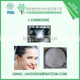 Factory directly Supply Carnosine ,L-Carnosine , L-Carnosine powder CAS 305-84-0