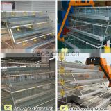 China factory supply hot sale poultry house/chicken poultry layer cage/baby chicken cages for sale