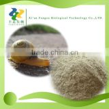 High Quality Snail Protein Extract Powder with Low Price