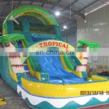 High quality beautiful coconut palm water slide with pool WS068