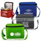 cheap thermal insulation non woven cooler Bag for sea food