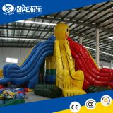Large Outdoor Inflatable Children Inflatable Slide, Water Slide