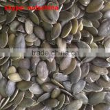 2014 new crop Chinese GWS (organic dark green pumpkin seeds grown without shell) AAA / AA/A/OIL GRADE