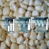 best price for garlic ginger grinding machine