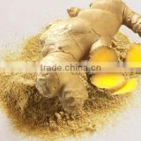 Dried Ginger Powder Manufacturer and Supplier