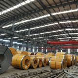 Cold Rolled Steel Coil Hot Dipped Galvanized