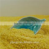 organic hulled glutinous yellow millet for vacuum packing and bulk