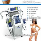 Coolplas Explos Fda Nd Yag Long Pulse Laser Coolplas 1-10Hz Body Slimming Machine Fat Freezing Weight Loss Beauty Device 800mj