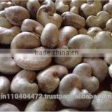 Cheap Raw Cashew Nuts in shell/African Cashew low price /Avg 80 Kg Bag Min Moisture <10% Raw Cashew Nuts