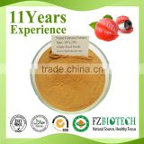 High Quality Guarana Seed Extract Wholesale, Liquid Guarana Extract Powder