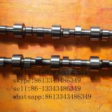 construction machinery parts QSL9 diesel engine camshaft 3966430