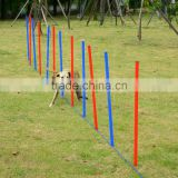 Pet Agility Training Dog Play Run Jump Training Set