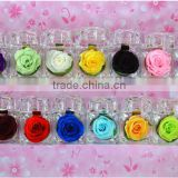 Manufacture Supply Hight Quality Cut Fresh Preserved Roses Valentines Teachers National Day Gifts