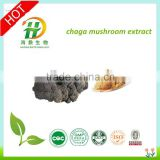 natural chaga extract