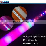 flexible tube led strip light diffuser 5050 led strip light led flexible neon strip light