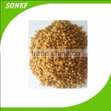 Supply High Quality Fertilizer Granular DAP Diammonium Phosphate