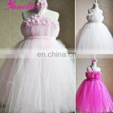 Paris Pink Flower Girls Tutu Dress