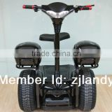 2013 new style golf electric scooter think car