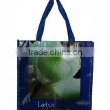Shopping bag for promotion ,2013 eco pp non woven shopping bag