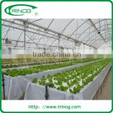 Advanced nft hydroponic systems for sale