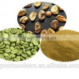 china GMP manufacturer supply Green Coffee Bean Extract