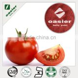 Natural GMP 100% natural tomato extract powder, tomato extract lycopene, lycopene powder for antioxidant