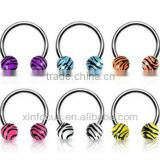 Stainless steel circular (horseshoe) barbell with tiger print balls, 16 ga cbr body piercing