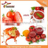 New Hot sale tomato sauce filling machine tomato sauce making machine tomato paste treatment equipment