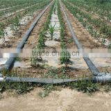 Factory Price Sale High Quality 3 inch Irrigation Hose