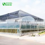 Versatile Multi Span Poly film Greenhouse for Agriculture / Hydroponics / NFT and Soiless systems