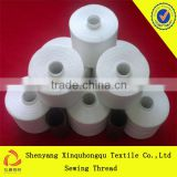 Spun Polyester Sewing Thread/TFO Quality/100% Yizheng Fibre                                                                         Quality Choice