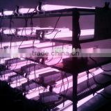 400W PAR Induction Grow Light