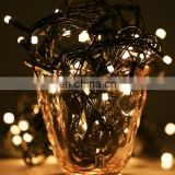 10m Waterproof 100 LED String Decorative Lights with End Joint & Controller, Flashing / Fading / Chasing Effect, EU Plug, AC 220