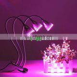 With Hold Clip LED Growth Lamp