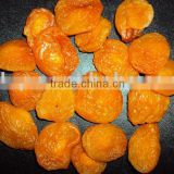 new crop dried apricot